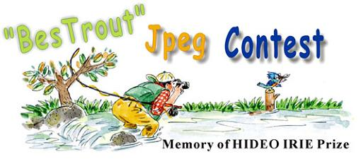 BESTROUT JPEG CONTEST / Memory of Mr.Hideo Irie Prize